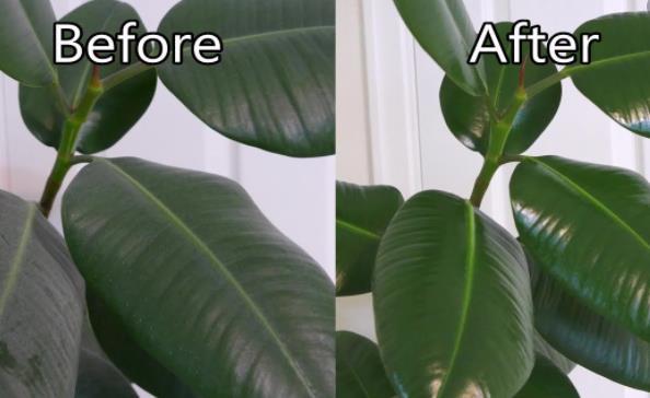 plant polish spray aerosol filling machine